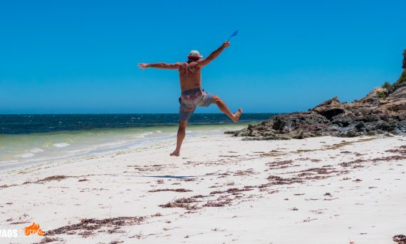 Fly Swat Aus Outback